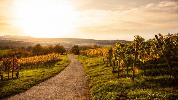 Landscape Southern Germany